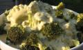 Sýrová omáčka sbrokolicí