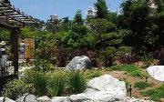 Jak vybudovat plastové zahradní jezírko
